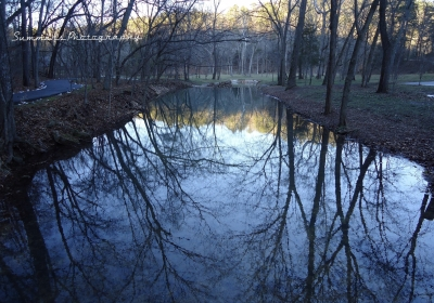 Reflections At Dogwood Canyon