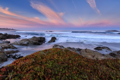 Daybreak At Pebble Beach