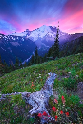 Mt. Rainier – Magic