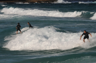 Surfing At Bronte Beach