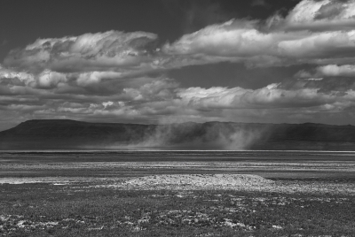 Dust Devils In The Alvord Desert
