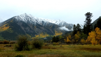 Early Snow And Fall Color
