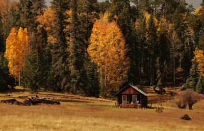 Fall In The Moutains