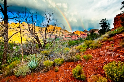 Red Rock Rainbows