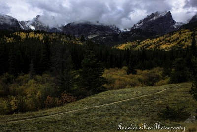 Trail To The Wilderness