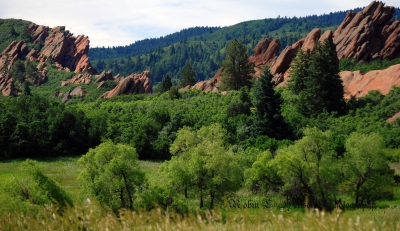 Green Valley Of Roxborough Park
