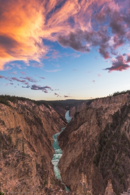 Vein Of The Yellowstone