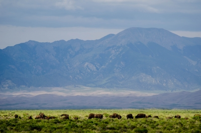 San Luis Valley The Way It Was…