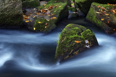 Mossy Boulders And Water – Bird Rock Falls