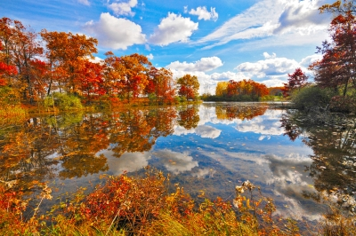 Autumn On Kent Lake