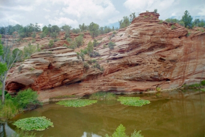 Red Rocks And Lily Pond