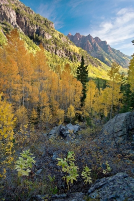 Early Maroon Bells Morning