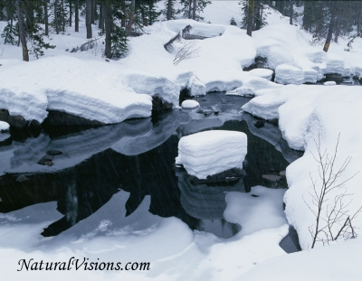 Donner Pass Frozen