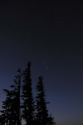 Orion From Hurricane Ridge