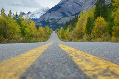 Autumn At Icefields Parkway