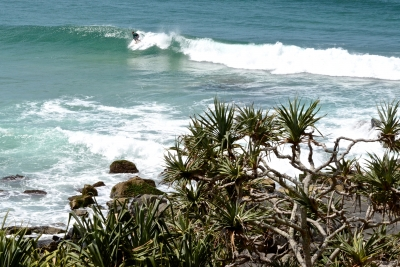 Surfing At Cabarita Beach