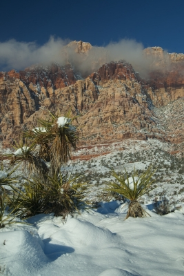 Rare Red Rock Canyon Snow