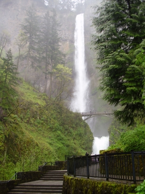 Multnomah Falls In The Spring