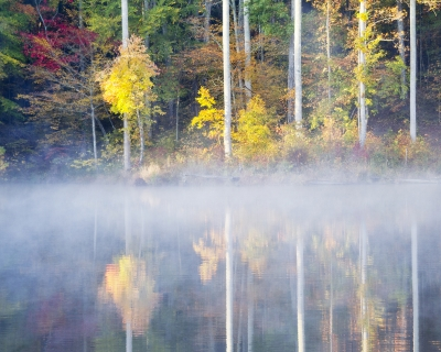 A Foggy Fall Morning On The Pond