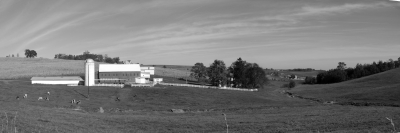 Amish Country Side