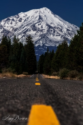 Low Road To Mt. Shasta