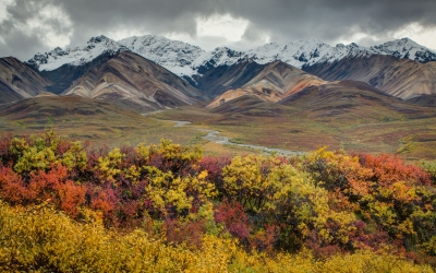Autumn At Polychrome Pass