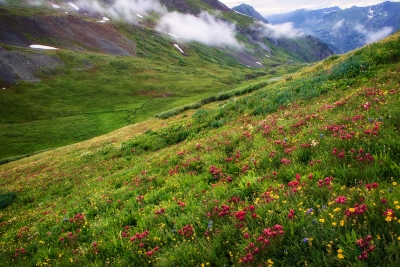 Valley Of Ten Thousand Flowers
