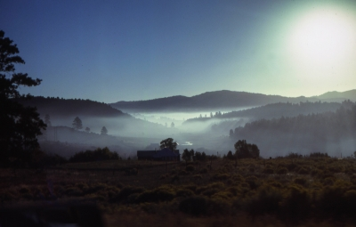 Morning Sun And Fog Near Durango