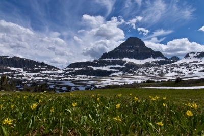Spring In The Mountain Snow