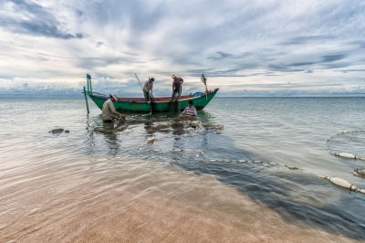 Fishermen Bringing In Their Nets, Vietnam