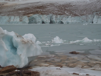 Ice At Cavell Pond