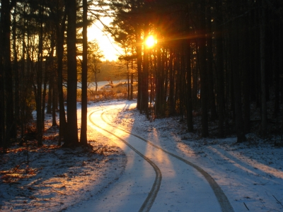 Dawn On The First Snow