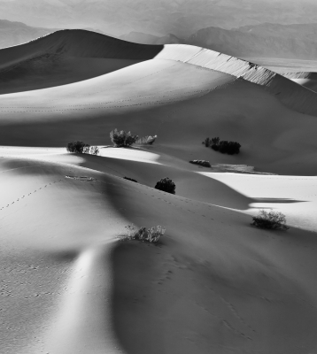 Footprints And Sand Dunes