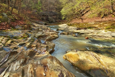 Piney Creek Ravine Revisited
