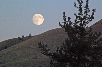 Moonrise At John Day Fossil Beds