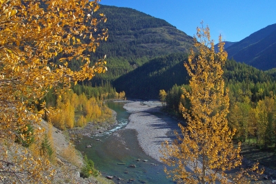 Autumn Along The Middle Fork Of The Flathead