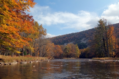 Penns Creek – Fall 2012