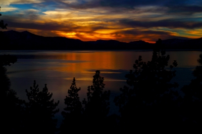 Blue And Gold Of Tahoe