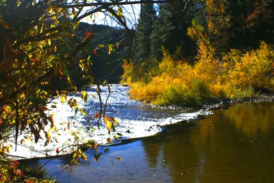 Fall Scene Along Highway 21