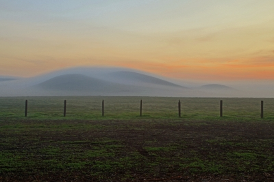 Rush Ranch Fog And Sunrise