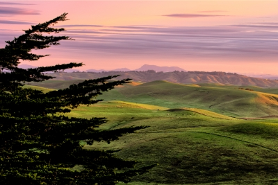 Winter Hills Of Northern California