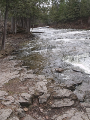 Ocqueoc River Spring Thaw