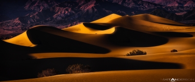 Twisted Dunes