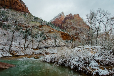 Fresh Snow In Zion