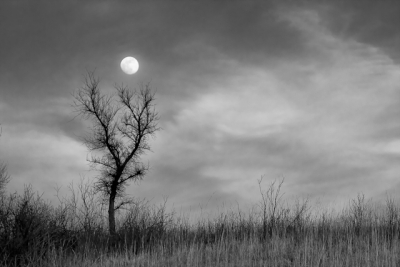 Holding The Moon Bw