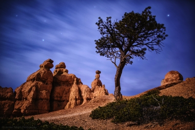 Moon Light On Bryce Canyon