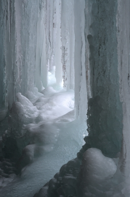 A Small Ice Grove