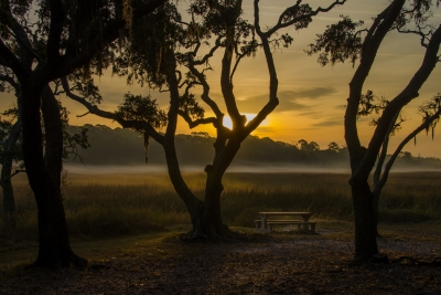 Picnic Table At Dawn