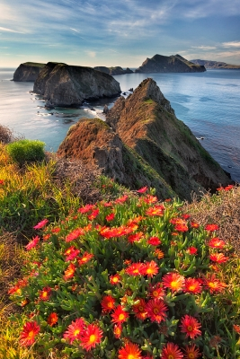 Inspiration Point, Anacapa Island, Channel Islands National Park