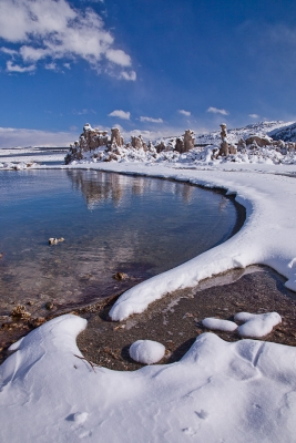 Fresh Snow At Mono Lake